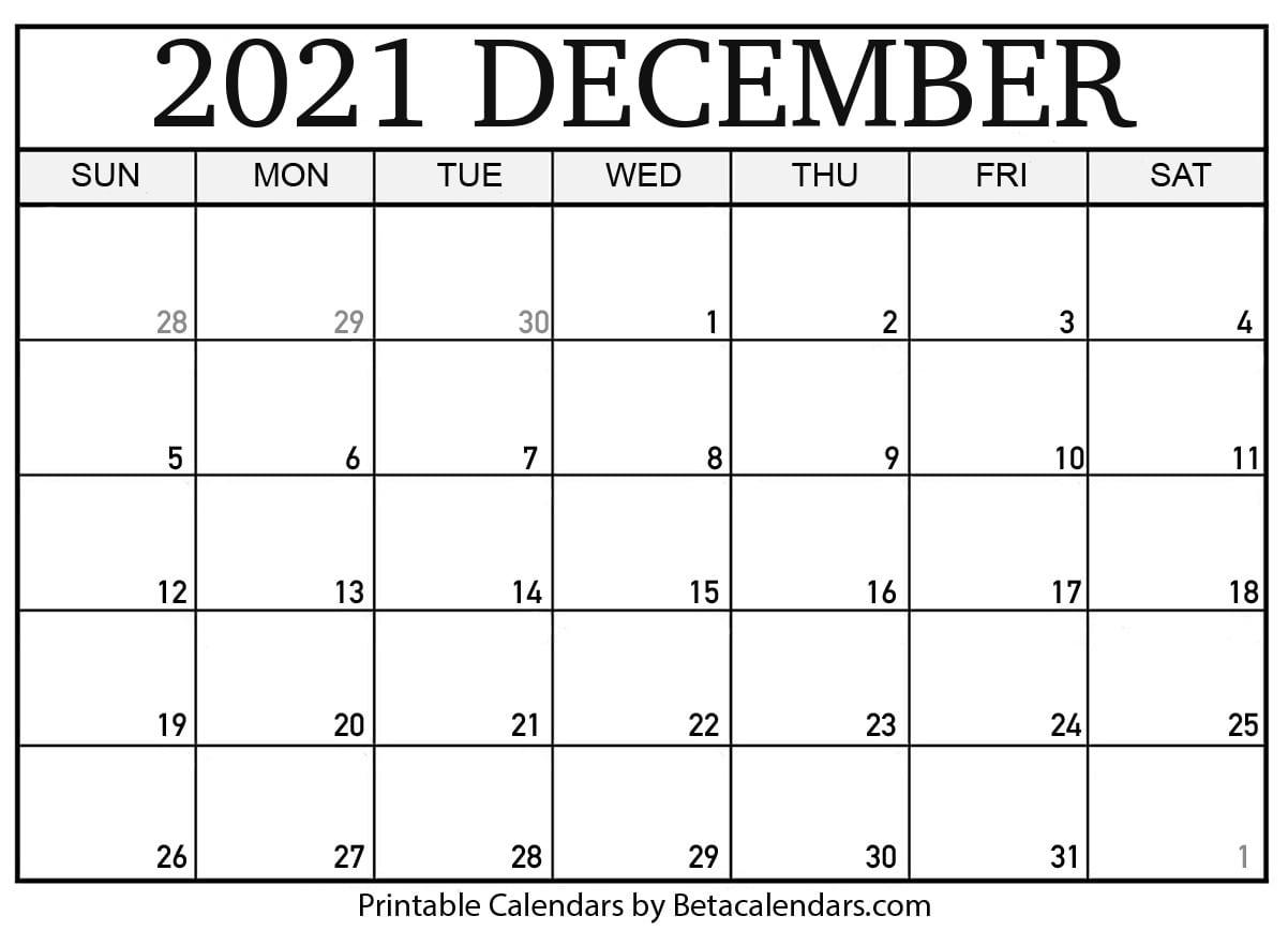 Blank December 2021 Calendar