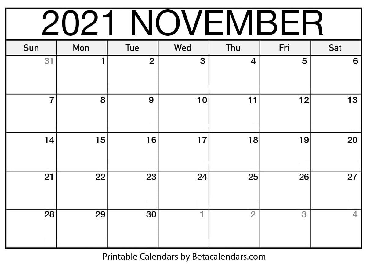Blank November 2021 Calendar
